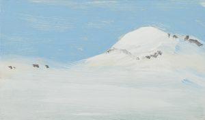 droombeeld antarctica 1